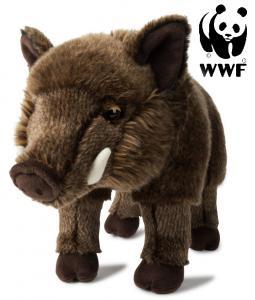 Vildsvin - WWF (Verdensnaturfonden)