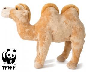 Kamel - WWF (Verdensnaturfonden)