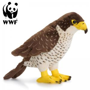 Falk - WWF (Verdensnaturfonden)