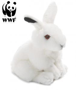 Vinterhare - WWF (Verdensnaturfonden)