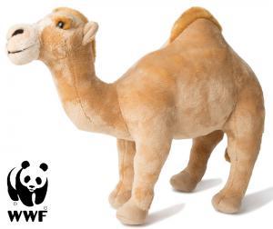 Dromedar - WWF (Verdensnaturfonden)