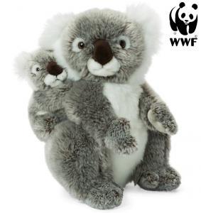 Koala med baby - WWF (Verdensnaturfonden)