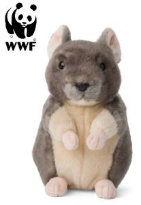 Chinchilla - WWF (Verdensnaturfonden)