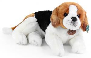 Beagle - Rappa Toys