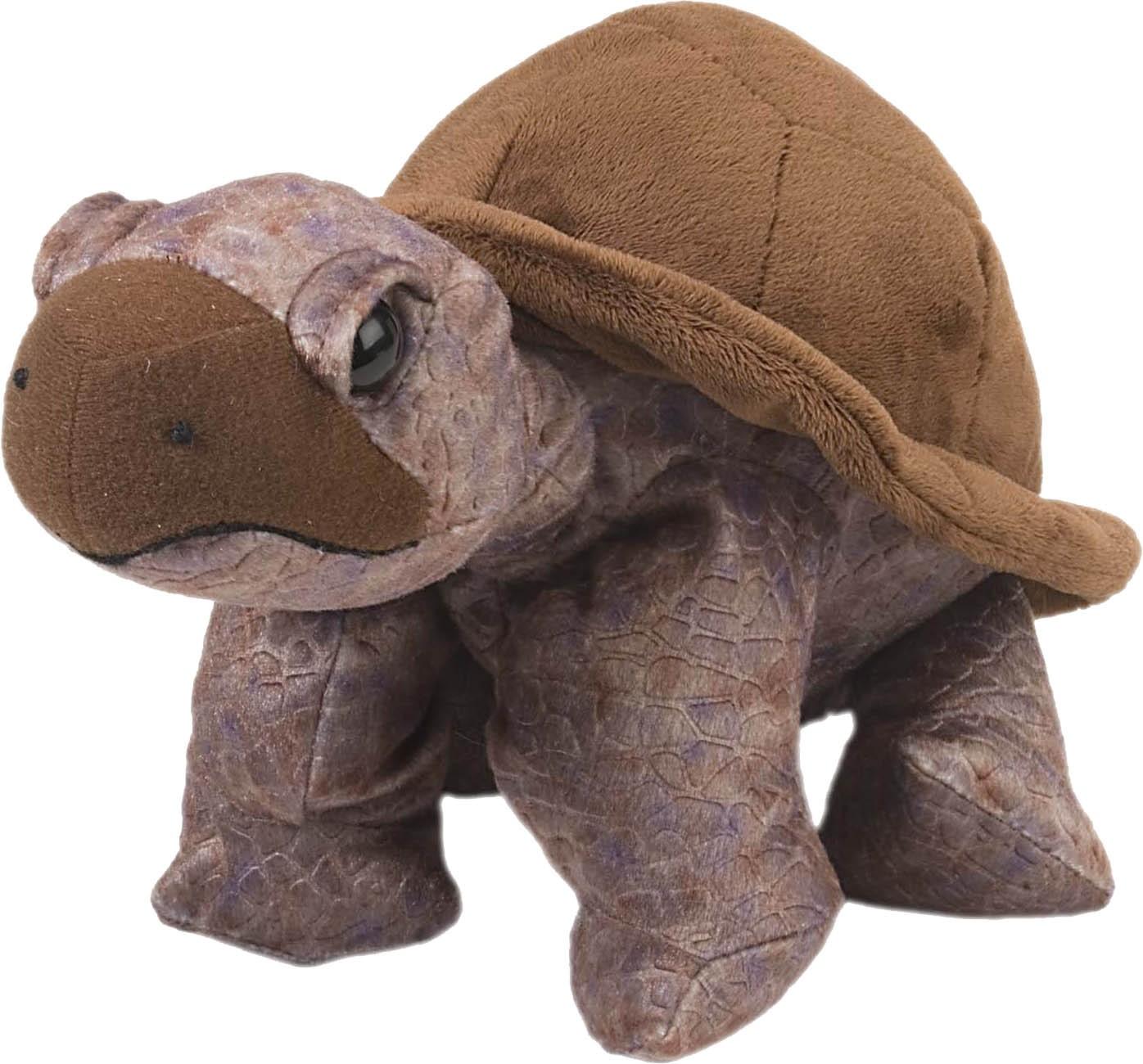 Skildpadde, 30cm - Wild Republic